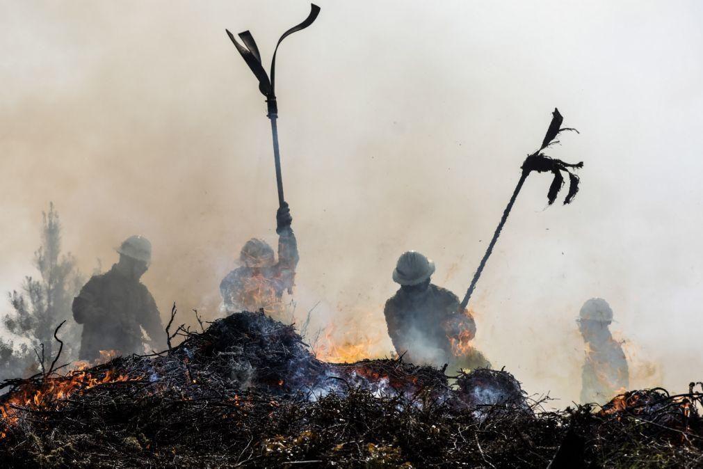 Incêndio em pinhal de Oleiros combatido por bombeiros de três distritos do Centro