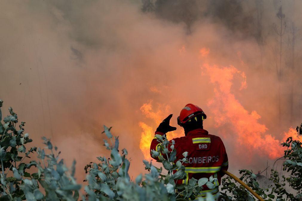 Incêndios: Fogo que alastrou a Proença-a-Nova e Sertã ameaça casas