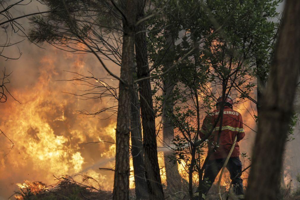 Incêndios: Governo declara situação de alerta entre segunda e terça-feira