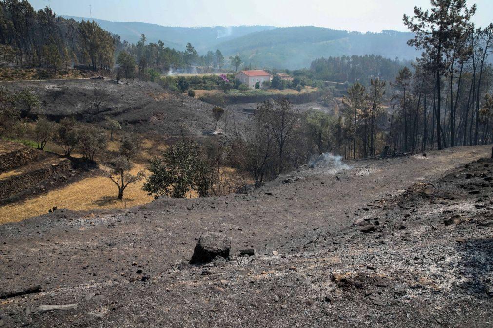 Incêndios: Câmara de Oleiros prevê um prejuízo de sete milhões de euros