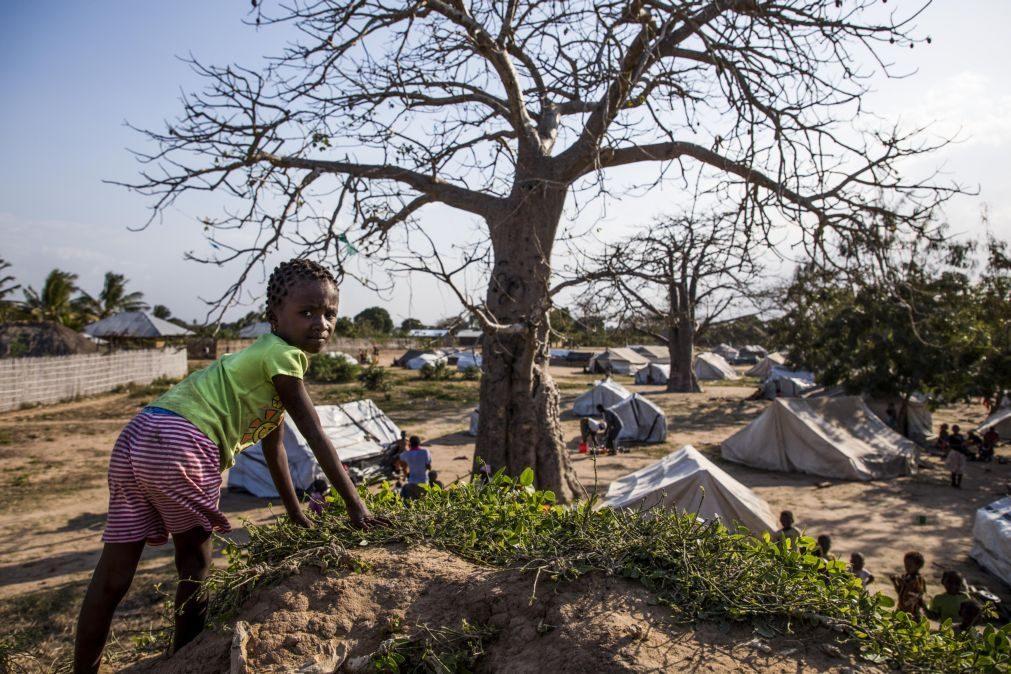 ONG moçambicanas vão apoiar o Governo na revisão da política de terras