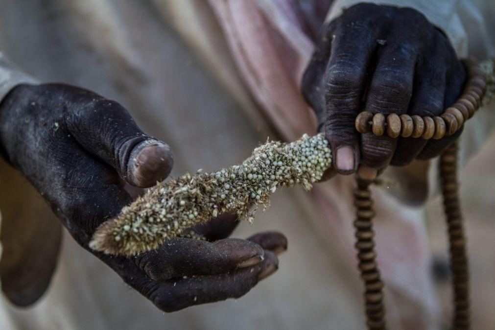 Covid-19: Quase 45 milhões de pessoas em situação de insegurança alimentar na África Austral