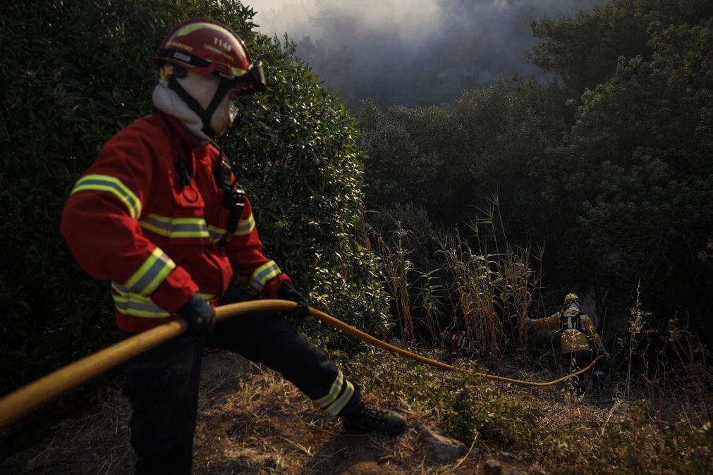 Mais de meia centena de bombeiros combatem fogo em aterro na Chamusca
