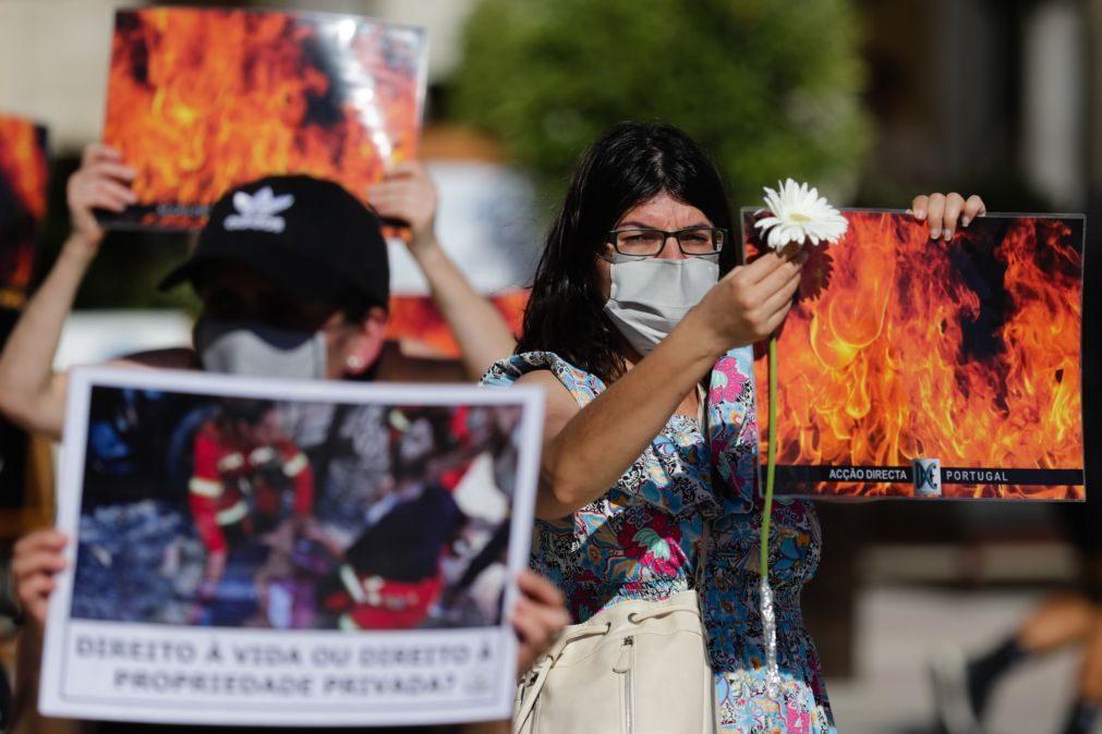 Prisão preventiva para suspeito de ter ateado fogo que matou animais de Santo Tirso