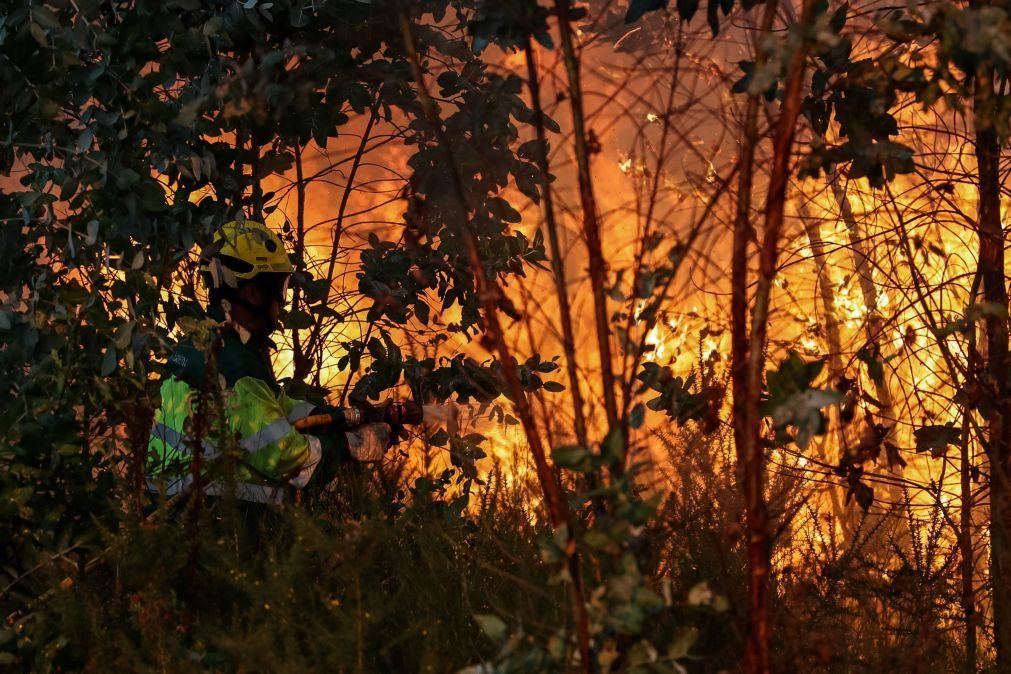 Mais de 200 operacionais combatem fogo na Pampilhosa da Serra