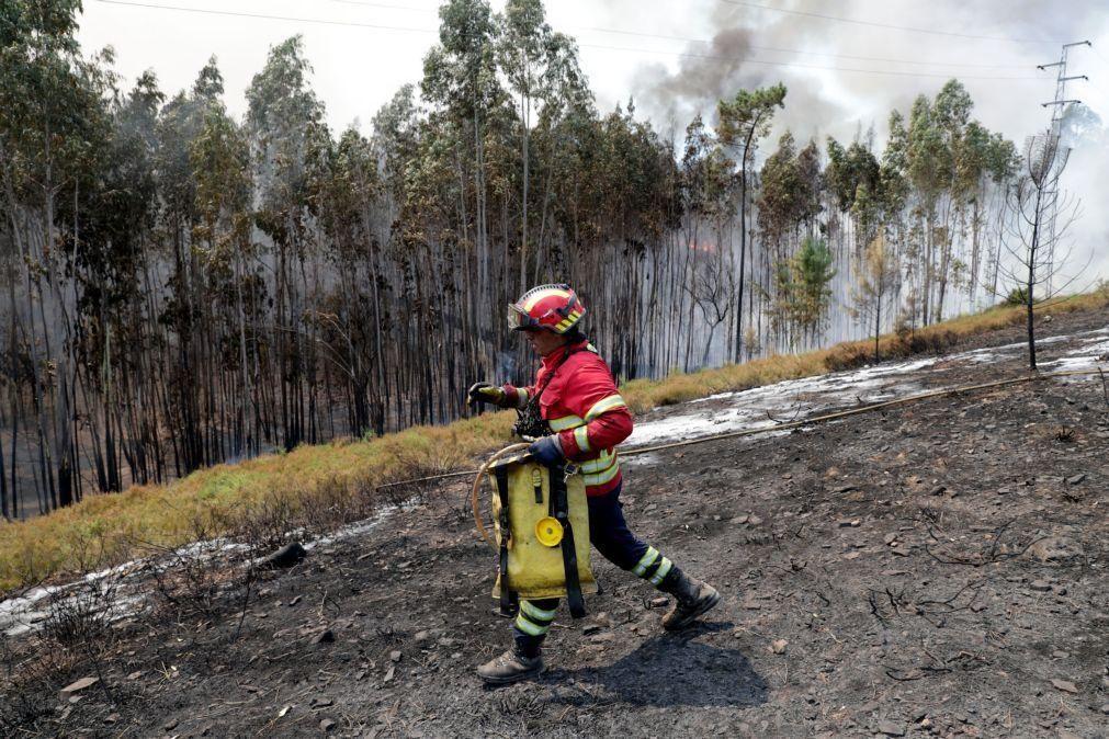 Incêndios: Três concelhos dos distritos da Guarda e Faro em risco máximo