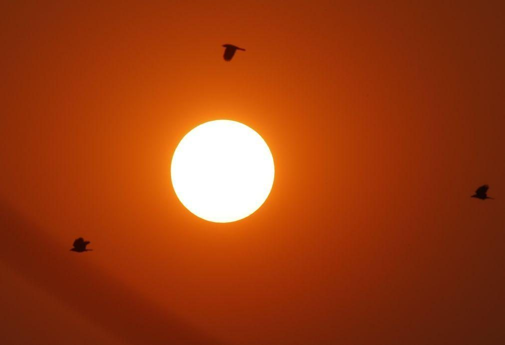 Investigadores juntam luz do sol, dióxido de carbono e água e fazem combustível