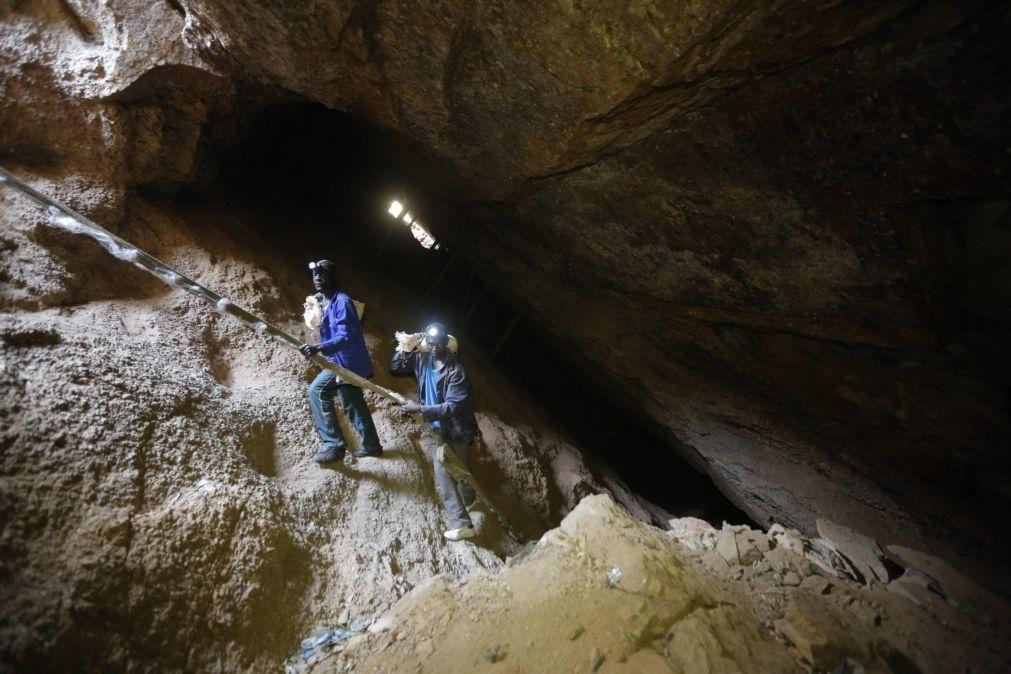 Covid-19: Mais de 4.000 mineiros moçambicanos saíram da África do Sul em março