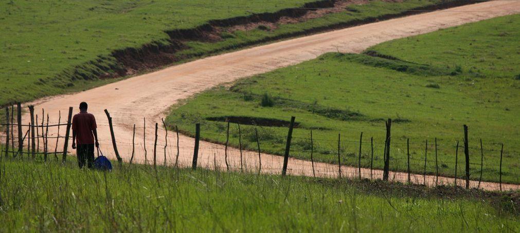 Mota-Engil assina contrato de 298 ME para construção e reabilitação de estradas em Angola
