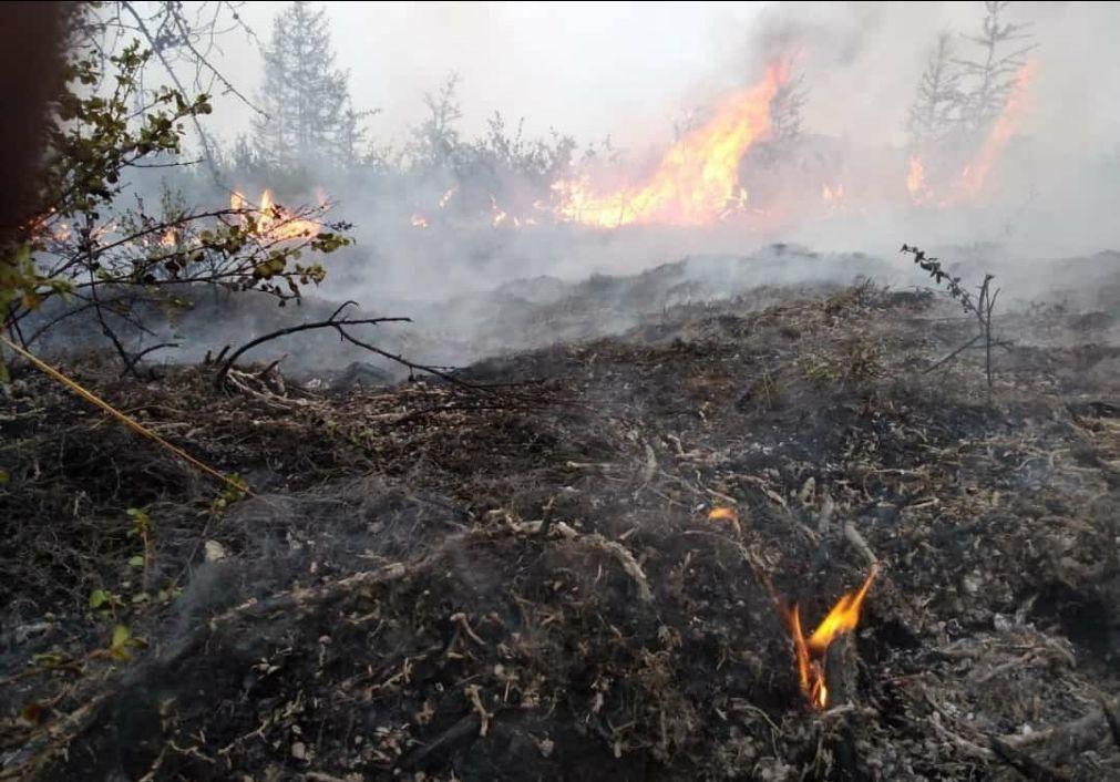 Fogos na Sibéria provocam níveis de emissões de CO2 sem precedentes