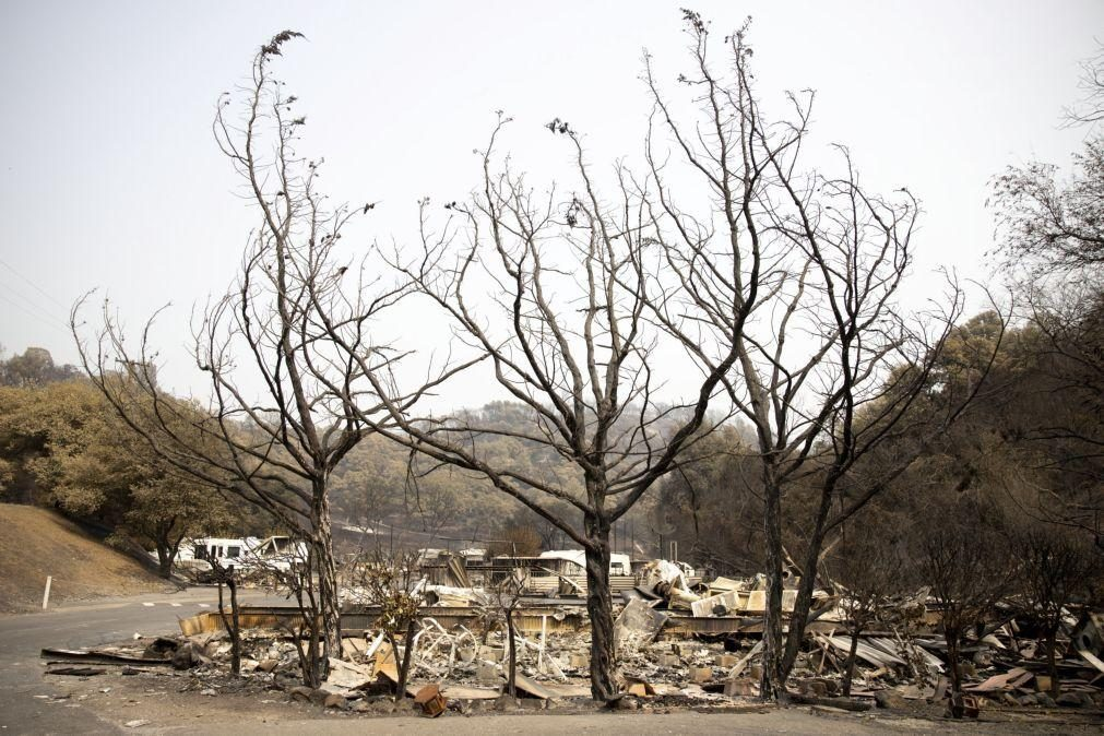 Incêndios na Califórnia obrigam à retirada de dezenas de pessoas cercadas pelas chamas