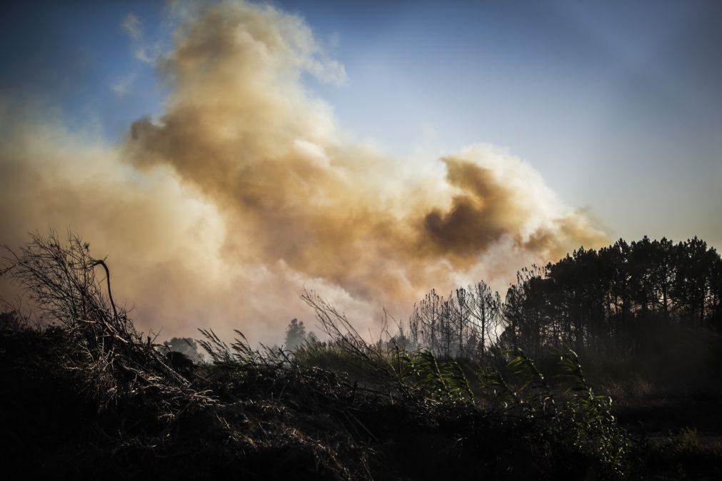 Combate ao fogo no parque natural em Porto de Mós