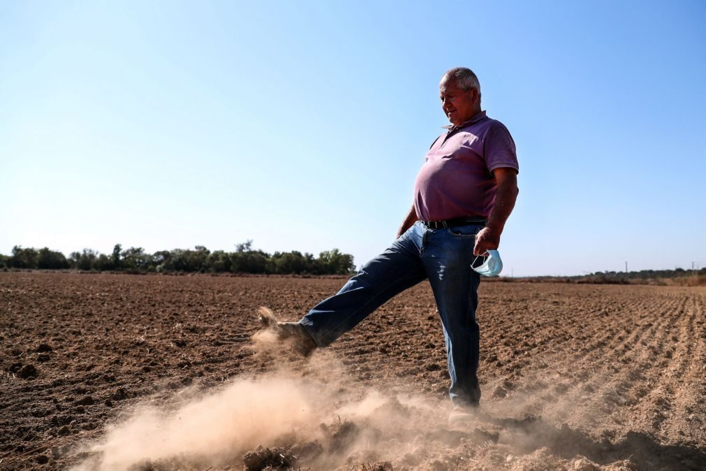 Seca: Sem rega a partir de barragem no Alentejo, agricultores olham para