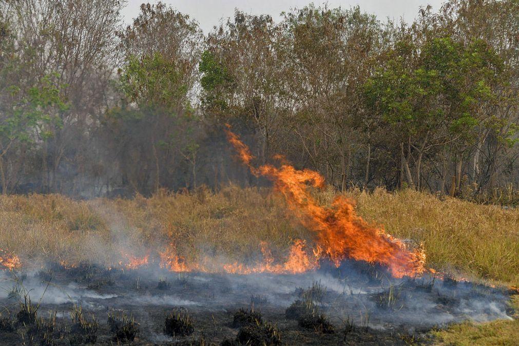 Governo do Brasil reconhece emergência em incêndios no Pantanal e vai enviar ajuda