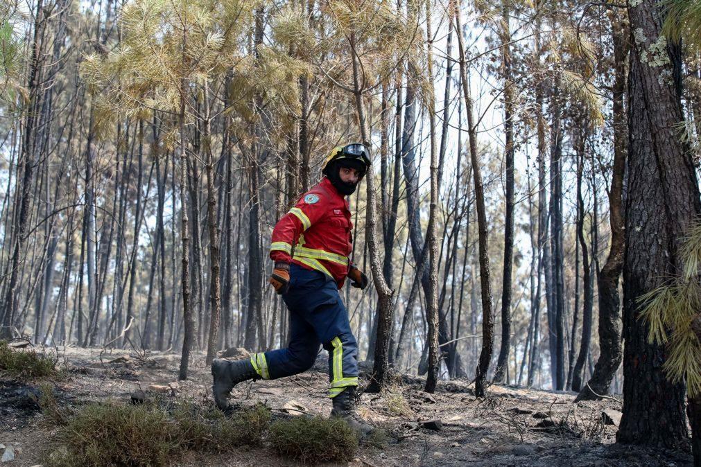 Incêndios: Fogo que começou em Proença-a-Nova no domingo ficou em resolução
