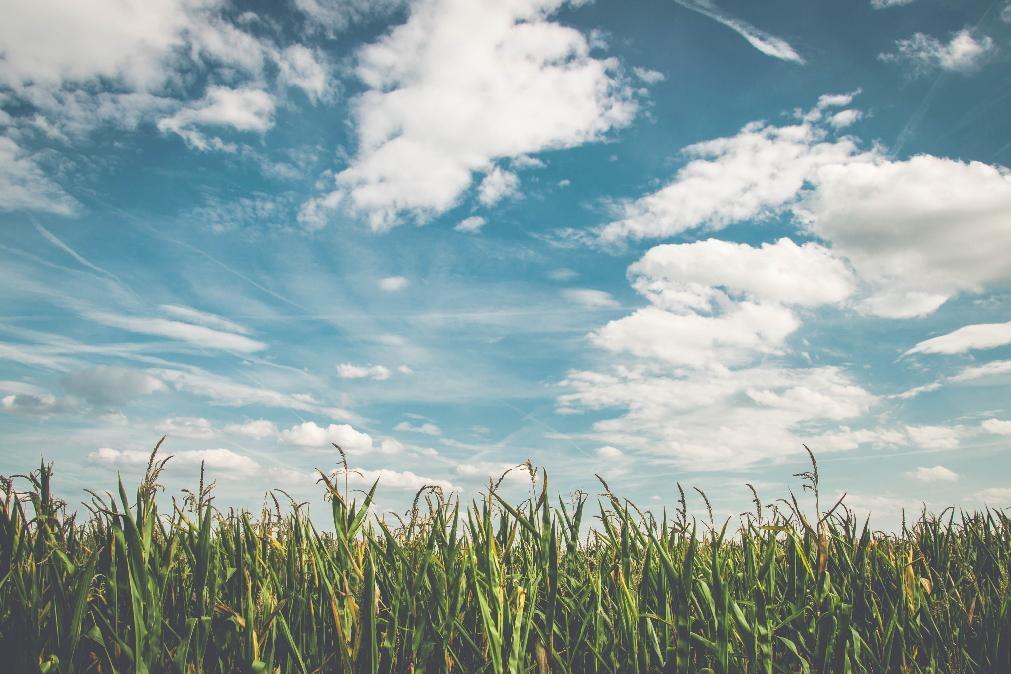 Meteorologia: Previsão do tempo para segunda-feira, 5 de outubro