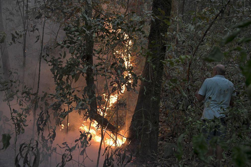 Amazónia brasileira regista maior número de focos de incêndio da última década