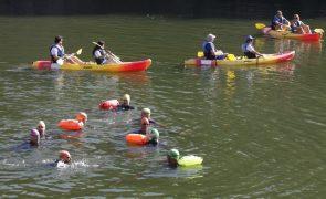 Nova perspetiva das gravuras do Côa conquista-se a nado nas águas do rio