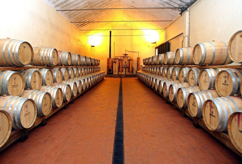 Exportações de vinhos portugueses cresceram 8,3% em agosto -- Ministério da Agricultura