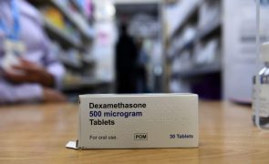 Covid-19: Dexametasona corticosteroide é a única terapêutica eficaz, diz OMS