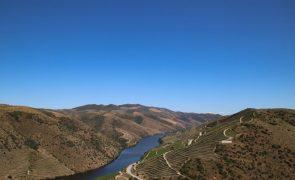 Projeto vai avaliar o impacto das alterações climáticas no Vale do Côa
