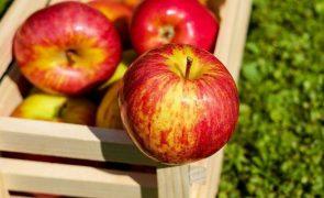 3 alimentos saudáveis que deixam a barriga inchada