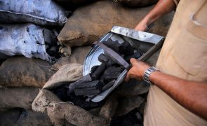 Covid-19: Produção e venda de carvão da Vale em Moçambique caíram cerca de um terço