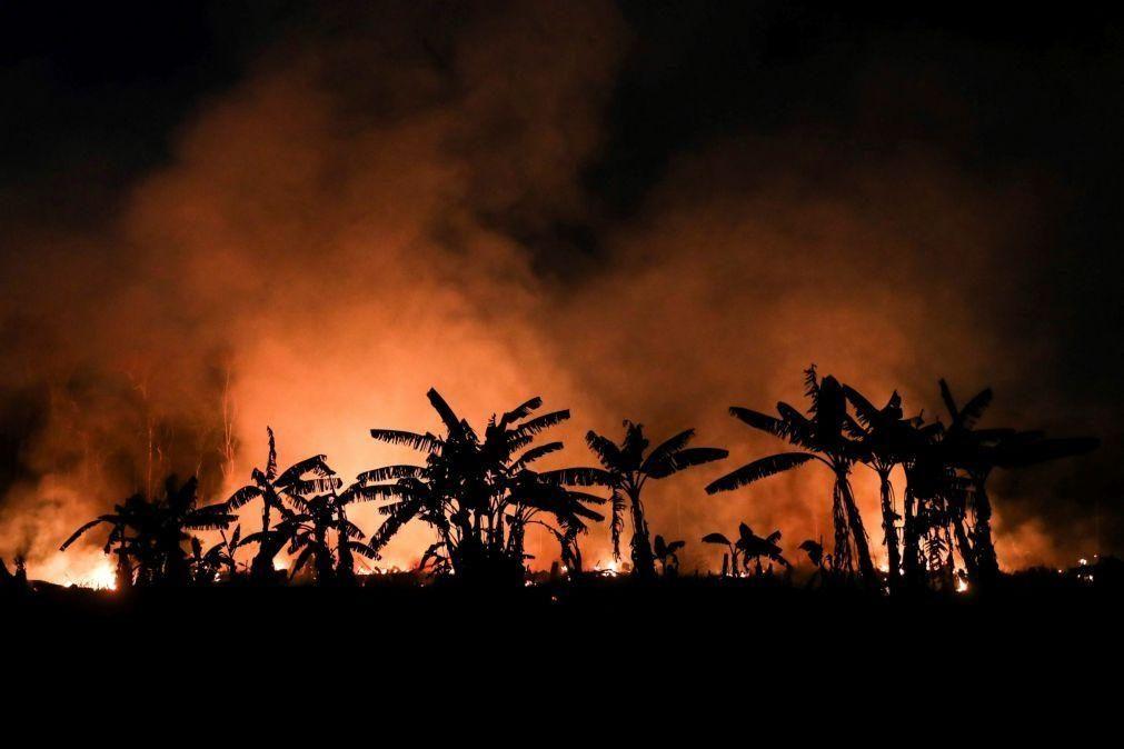 Número de queimadas na Amazónia este ano já ultrapassa o total de 2019