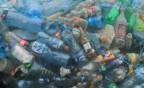 Quase 230 mil toneladas de plástico deitadas fora anualmente no Mediterrâneo