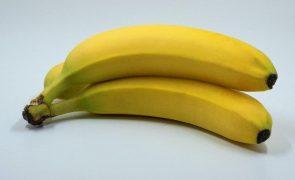 Banana Será mesmo verdade que não se deve comer este fruto à noite? Descubra a resposta