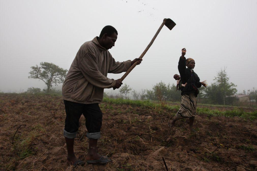 Orçamento angolano introduz IVA a 14% no jogo e baixa imposto sobre bens agrícolas