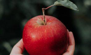 maçã 4 benefícios para o organismo de comer uma por dia