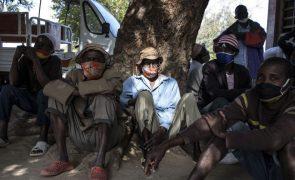 Partido Livre preocupado com insurgência em Cabo Delgado
