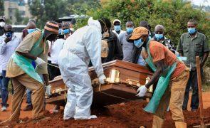 Covid-19: África com recorde de quase mil mortos e 50 mil recuperados em 24 horas