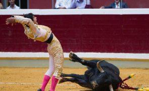 Petição contra restrições de menores em touradas com mais de 14 mil assinaturas
