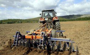 Covid-19: Ministério da Agricultura já pagou quase 553 ME em adiantamentos