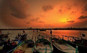 Estratégia para o mar diz pouco sobre a pesca -- armadores