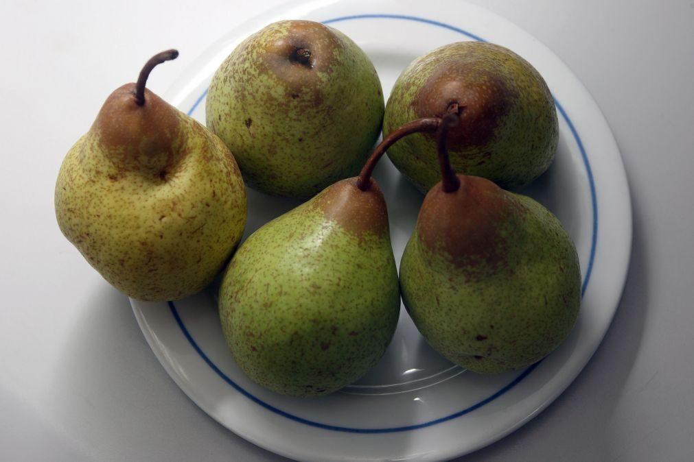 Produção de pera, maçã e azeitona com quebras de 35%, 25% e 30% este ano