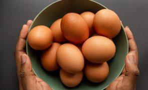 Este truque é infalível para saber se um ovo já está cozido