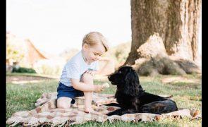 Morreu Lupo, o cão de William e Kate Middleton