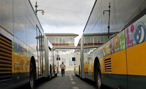 Covid-19:  Setenta autocarros reforçarm a partir de hoje transporte público na AML