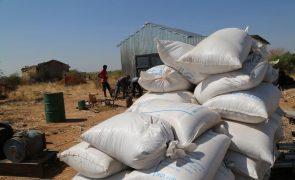 Moçambique/Ataques: Apoio alimentar vai ser reduzido a partir de terça-feira - PAM