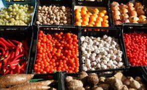 Covid-19: Publicadas medidas excecionais para programas no setor das frutas e produtos hortícolas