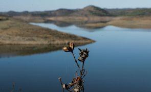 Chuva de outono alivia agricultores algarvios mas não afasta ameaça de racionamento