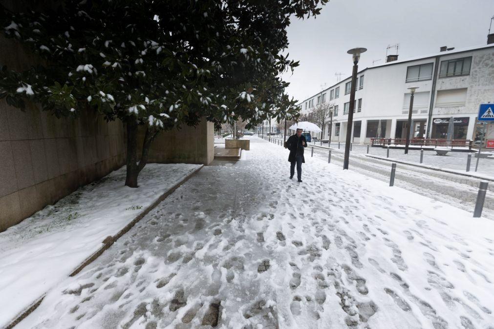 Proteção civil registou 44 ocorrências de queda de neve e árvores