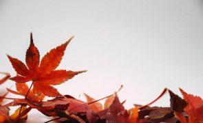 Meteorologia: Previsão do tempo para domingo, 13 de dezembro