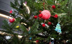 Covid-19: Governo dos Açores prepara visitas de familiares a lares de idosos no Natal