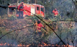 Projeto internacional obtém 10 ME para estudo de grandes incêndios florestais