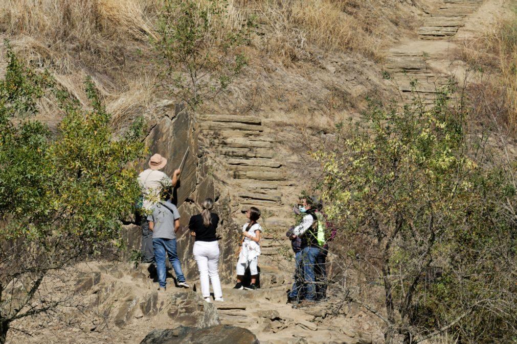 DGPC e fundação com 18 meses para criar Programa Especial do Parque Arqueológico do Côa