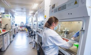 Covid-19: Nova variante do vírus já está noutros países europeus